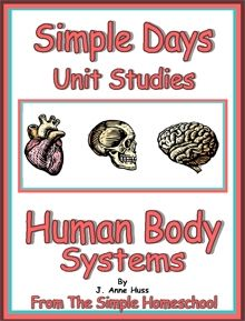 Human Body Systems- Simple Schooling