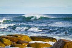 winter beach Water Surfing, Surf Accessories, Winter Beach, Saturdays Nyc, Surfer Magazine, O Canada, Jackson, Waves, Cold