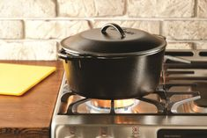 Amazon.com: Lodge L8DOL3 Cast Iron Dutch Oven with Dual Handles, Pre-Seasoned, 5-Quart: Kitchen & Dining