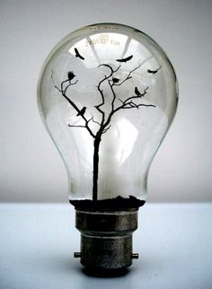 A different take on a light bulb: ideas can grow. light-bulb crafts This is great the way you can use a light bulb more then one thing its a art work on its own. Light Bulb Crafts, Light Bulb Art, Mini Terrarium, Terrariums, Creative Photos, Creative Things, Creative Ideas, Cool Stuff, Belle Photo
