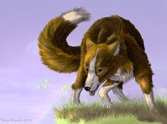 † Now extinct, the native Fuegian Dog of South America was a domesticated form of the Andean fox by Maija Karala