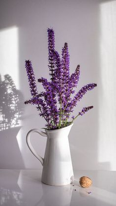 The latest iPhone11, iPhone11 Pro, iPhone 11 Pro Max mobile phone HD wallpapers free download, lavender, bouquet, vase, nut, white - Free Wallpaper   Download Free Wallpapers