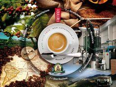 Il viaggio del caffè inizia da lontano. Oggi ti portiamo alla scoperta del nostro caffè: dalle origini all'espresso. #Coffee #Biologico