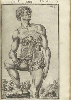 Author: Spiegel, Adriaan van (1578-1625) and Casseri, Giulio (ca. 1552-1616).    Title: De humani corporis fabrica libri decem.    Publication Information: Venice: Evangelista Deuchino, 1627.