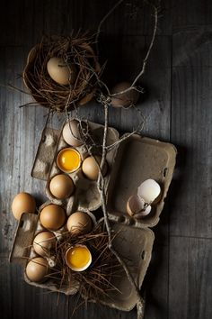 Eggs, view from above, low key
