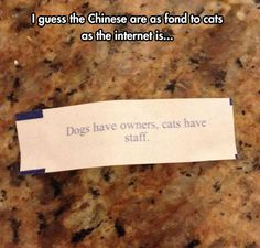 Animal relations change in China?