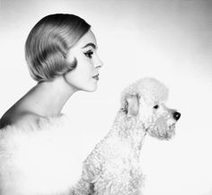 Grit Hubscher in white fur stole by Heinz Oestergaard with poodle, photo by F. Love Pet, Puppy Love, Black And White Dog, White Fur, Black Swan, Business Woman Successful, Berlin, Vintage Dog, Girl And Dog