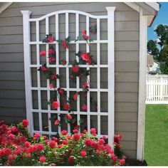 The New England Arbors White Vinyl Grande Arch Trellis is an elegant solution to any yard space question. Made of high-grade PVC vinyl material that. Arbors Trellis, Diy Trellis, Garden Trellis, Rose Trellis, Trellis Ideas, White Trellis, Wall Trellis, Metal Trellis, Wisteria Trellis