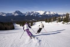 The best ski resort in the world - Lake Louise been skiing there since I was a tot Can't wait for trip this year Lake Louise Ski Resort, Ski Canada, Best Ski Resorts, Best Skis, Ski And Snowboard, Outdoor Life, Skiing, Cool Pictures, Beautiful Places