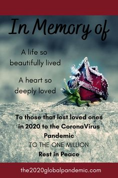 In Memory of A life so beautifully lived A heart so deeply loved To those that lost loved ones in 2020 to the Coronavirus Pandemic To the ONE MILLION Rest in Peace #the2020globalpandemic #onemillion #deaths #wearamask #maskup #coronavirus Love Deeply, Lost Love, Rest In Peace, One In A Million, Memories, History, Heart, Life, Historia