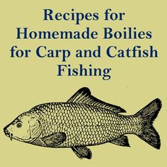 IG Recipes for Homemade Boilies for Carp and Catfish Fishing Think it will work for Rainbow? Marie