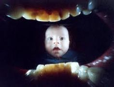 Justin Quinell mouth camera pinhole photography