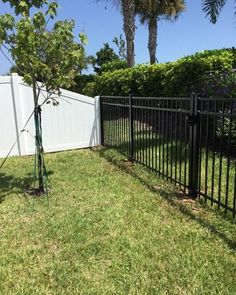 Have multiple fence needs for your backyard? Don't be afraid to mix fence materials and/or styles, like combining a vinyl privacy fence with an aluminum picket fence. Vinyl Privacy Fence, Privacy Fences, Yard Privacy, Fence Panels, Fence Landscaping, Backyard Fences, Yard Fencing, Front Yard Fence, Fenced In Yard