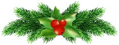 Christmas Holly Pine PNG Clip Art Image
