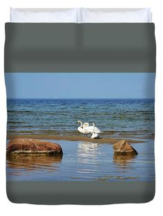Three Swans At Seaside Duvet Cover featuring the photograph Three Swans At Seaside by Helga Preiman #HelgaPreiman #DuvetCovers #ThreeSwansAtSeaside  #ArtForHome #FineArtPrints
