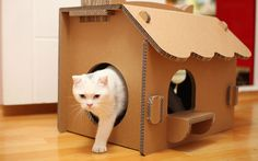 Simple Design Of The Cardboard Cat House With Single Rounded Door Ideas  With Brown Color Ideas