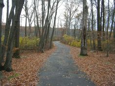 7. Lincoln Woods State Park, Lincoln