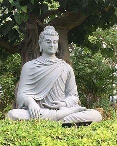 Gautama Buddha, Buddha Buddhism, Buddha Art, Buddha Decor, Buddha Statue Home, Buddha Statues, Buddha Quotes Inspirational, Buddha Garden, Buddha Sculpture