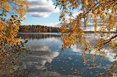 Autumn in Småland