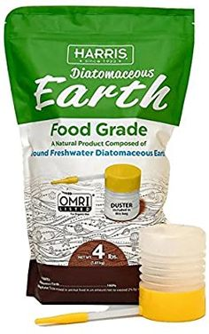"""Problems In Growing Tomatoes Diatomaceous Earth works in the garden as pest control """"eating through"""" insects exoskeleton drying them out, an eco-friendly alternative. [LEARN MORE] Flea Powder, Rid Of Ants, Bees And Wasps, Beneficial Insects, Humming Bird Feeders, Growing Tomatoes, Baby Tomatoes, Green Tomatoes, Cherry Tomatoes"""