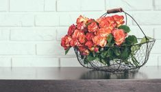 Έξυπνο Τρικ που θα Γεμίσει τη Βεράντα σας με Τριαντάφυλλα Room Tour, Agriculture, Serving Bowls, Decorative Bowls, Floral Wreath, Food And Drink, Tableware, Diy, Home Decor