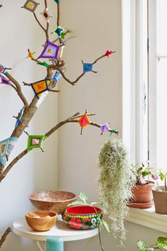 collect moments; ojo de dios tree by: Nicole Valentine Don.