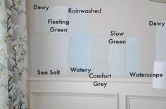 More Sherwin Williams Blue Gray color comparisons on her walls - Sea Salt (more blue than green), Fleeting Green (tad darker than Dewy), Rainwashed (too blue and bright), Watery (too bright), Comfort Grey (pale olive/greenish), Slow Green (too white), Waterscape (too bright/aqua), Dewy (pretty light). Trim is Divine White