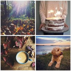 There is so much thoughtfulness in the photos shared with #savouringhappiness wandering through the feed is always time well spent. Much thanks to everyone shareing their pics these beauties are by @talesfromappletreehouse @yomargey @graceandflora @oodlesofhappy . #cherishandrelish_november #makelightautumn #upandautumn #autumncolours #autumnishere #aquietstyle_autumn #openuptoautumn #signsofautumn #aseasonalshift #embracingtheseasons #savouringtheseason #seekmoments #hopefulmoments…