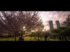 ▶ Clouds above TOKYO - YouTube