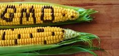 Why I Just Say No To GMOs: A Cardiologist Explains