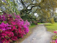 37 Best Urban Gardens Images In 2020 Garden Design Outdoor