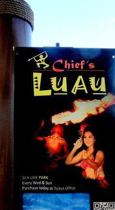 We go to a great Luau at Sea Life Park - O'ahu, Hawaii