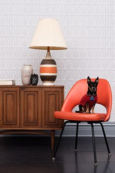 That lamp! That wood! That pup! Pilsen's New Design Collaborative - Domestica - February 2013 - Chicago