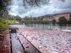 Margens do rio Vez em  Arcos de #Valdevez  na tarde ligeiramente molhada de hoje - facebook.com/ArcosdeValdevez -