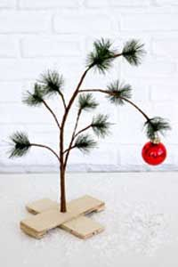 Charlie Brown Christmas tree.  I want to do this for xmas neighbor gifts with the book next year.