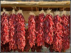 Ristra's of chile can be seen hanging off the portals all over nm & border towns of the southwest.