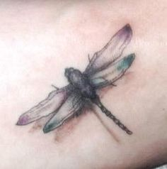 Dragonfly tattoo designs can be seen inked on small areas of the body such as the foot, ankle and wrist. Description from sandalsiseanmbut.blogspot.com. I searched for this on bing.com/images