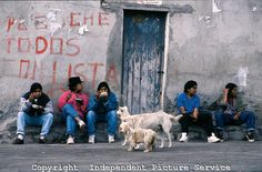 JK000258 Young male adults sitting on a curb, eating, as three dogs watch them eat, Ecuador | Flickr - Photo Sharing!