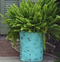 You might want to pick up some cheap trash cans when you see this gardener's GORGEOUS idea!