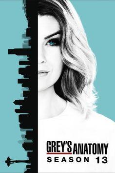 Grey's Anatomy Season 13 Online full all episodes greek subs oi Liomenoi