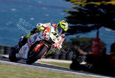 MotoGP Print - 2013 Moto GP Valentino Rossi 46 October 2013 Phillip Island Australia Saturday