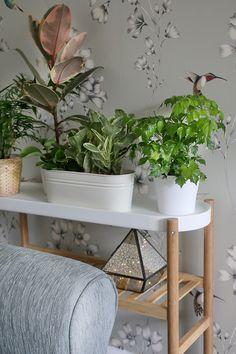 IKEA SATSUMAS Blumenständer aus Bambus und