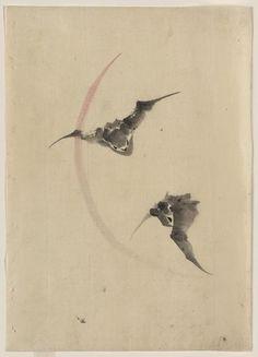 [Two bats flying] by Katsushika, Hokusai, 1760-1849. (Source: Library of Congress)