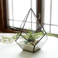 This handmade desert terrarium. | 19 Tiny Plants To Cheer Up Your Sad Work Desk