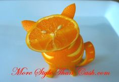 Cat made from orange