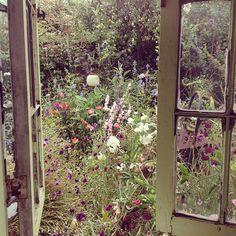 secret garden (rachel ashwell).