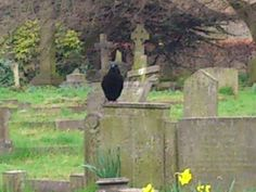 a resident of brompton cemetery London