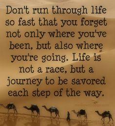 Don`t run through life so fast that you forget not only where you`ve been, but also where you`re going. Life is not a race, but a journey to be savored each step of the way.~unknown