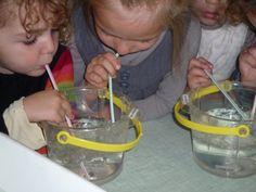 Osons un coin eau dans la classe! cycle 1 la main à lapâte Séance 1 « observer le passage de l'eau dans les moulins » Séance 2 : « transvaser, remplir » Séance 3 : « faire des bulles » Séance 4 : compléter des tableaux à l'aide de son cahier d'expériences Oral Motor Activities, Cycle 1, Montessori Math, Coin, Ps, Preschool, Kindergarten Classroom, Water Tray, Kindergarten