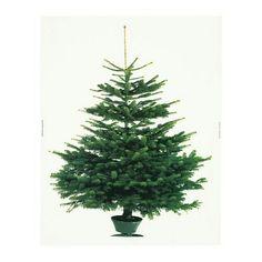 Feikki kuusi, tekojoulukuusi ikea kangas jouluvalot. Vie vähän tilaa. Yksiöön sopiva joulukoriste. Tai lapsi- lemmikkitalous, allergiaperhe, lastenhuone...